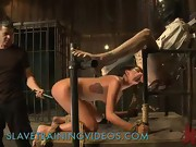 Restrained with ropes brunette fucked